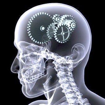 Гімнастика для розуму: стимулюємо мозкову активність