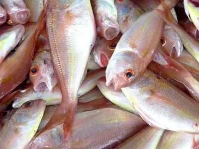 Як прибрати запах твані у риби